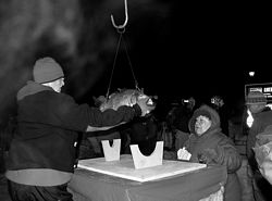 """The Droppin' of the Carp"" annually culminates the Carp Fest in Prairie du Chien, Wis., as the new year arrives."