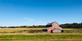 A rustic barn leans in a field  . Taken October 8th In Wisconsin  by Lorlee Servin.