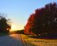 Fall color is seen in the trees. Taken Oct 27 in Dubuque by Lorlee Servin.