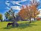 Horses grazing on a crisp fall day. Taken October 14 West side of Dubuque by Lorlee Servin.