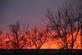 Last glimpse of a gorgeous sunset. Taken February 18 in Dubuque by Lorlee Servin.
