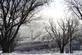 Winter's Last Stand. Taken Feb 2017 Sherrill, Ia by Laurie Helling.