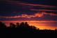 A brilliant fall sunset. Taken this week at the farm by Dawn Pregler.