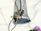 Peanut Jail. Taken 8/29/14 for this chipmunk by Stephanie Beck.