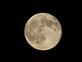 The Blue Moon. Taken July 31, 2015 Near Burton WI by sandy meier.