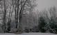 winter wonderland. Taken 1/21/15 in the morning by Stephanie Beck.