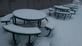 It's snow picnic. Taken 1/21/15 at work by Stephanie Beck.