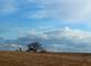Big Sky. Taken March Between Holy Cross and Luxemburg Ia by Laurie Helling.