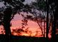 Country Sunset. Taken August 24, 2015 From my deck by Michele Potter.
