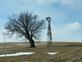 Lonely tree by a windmill. Taken 1-6-17 West of Maquoketa by Judy Lewis.