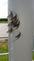 Fish Flies. Taken June 24, 2015 Peosta Channel Hike/Bike Trail by Nelson Klavitter.