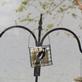 Downy woodpecker. Taken 11/1/19  Wisconsin by Linda Goodman.